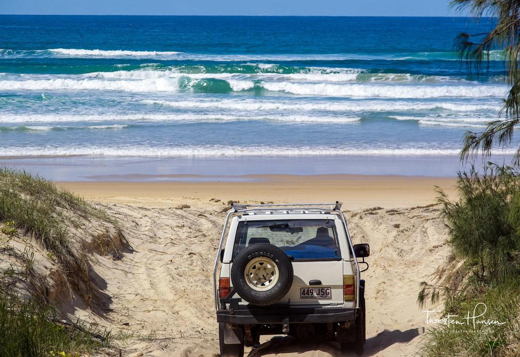 Erlebt mit dem Reiseleiter die Höhepunkte von Fraser Island, der größten Sandinsel der Welt. Lake Mckenzie, Dingos, Strand