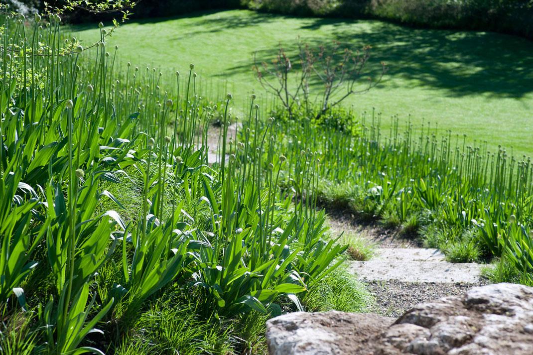 Designergarten, Detail Weg, Architektur von Stephan Maria Lang