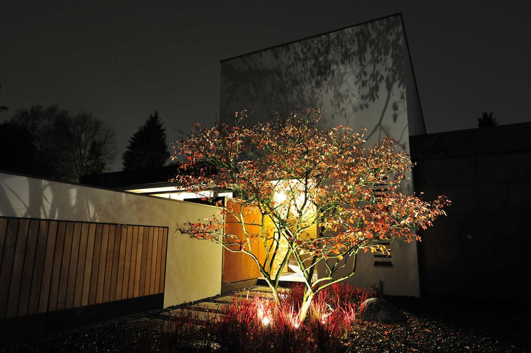 Architektenhaus, Gartenbeleuchtung, Architektur von Stephan Maria Lang