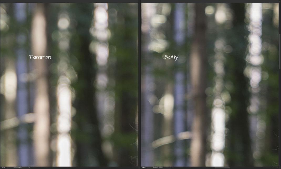 Tamron 28-75mm vs. Sony 24-70mm, Bokeh bei 75 bzw. 70 mm und f/2.8 V2, 100% Crop 2
