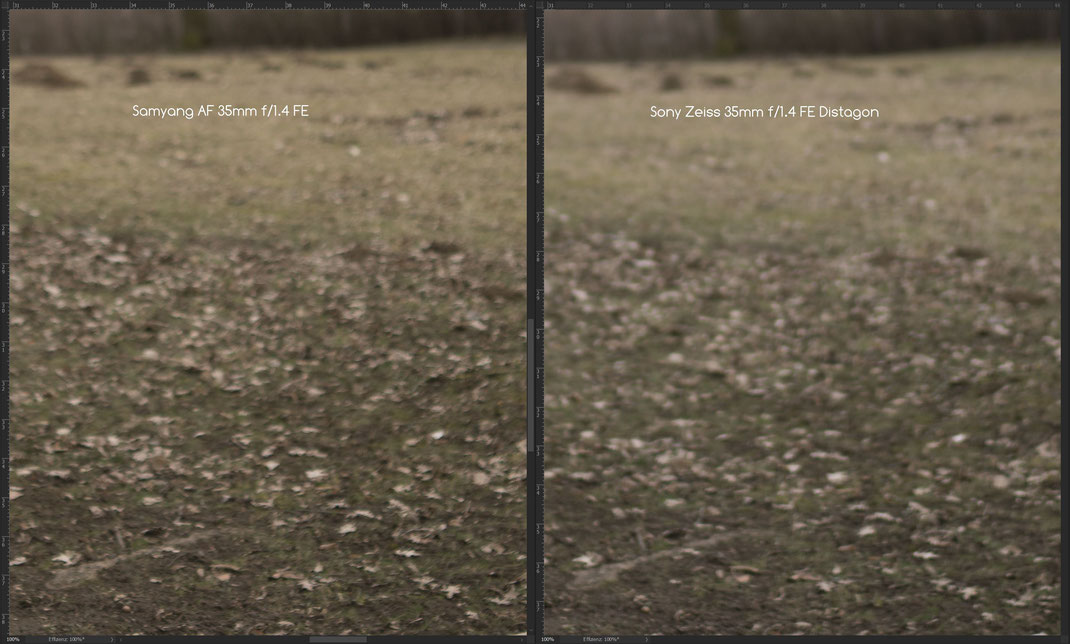 Samyang AF 35mm f/1.4 FE vs. Sony Zeiss 35mm f/1.4 Distagon, Bokeh 2