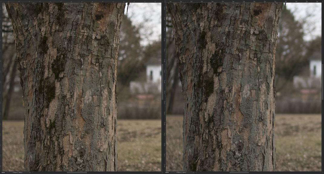 Samyang AF 35mm f/1.4 FE vs. Sony Zeiss FE 35mm f/1.4 Distagon, Schärfe bei f/1.4.