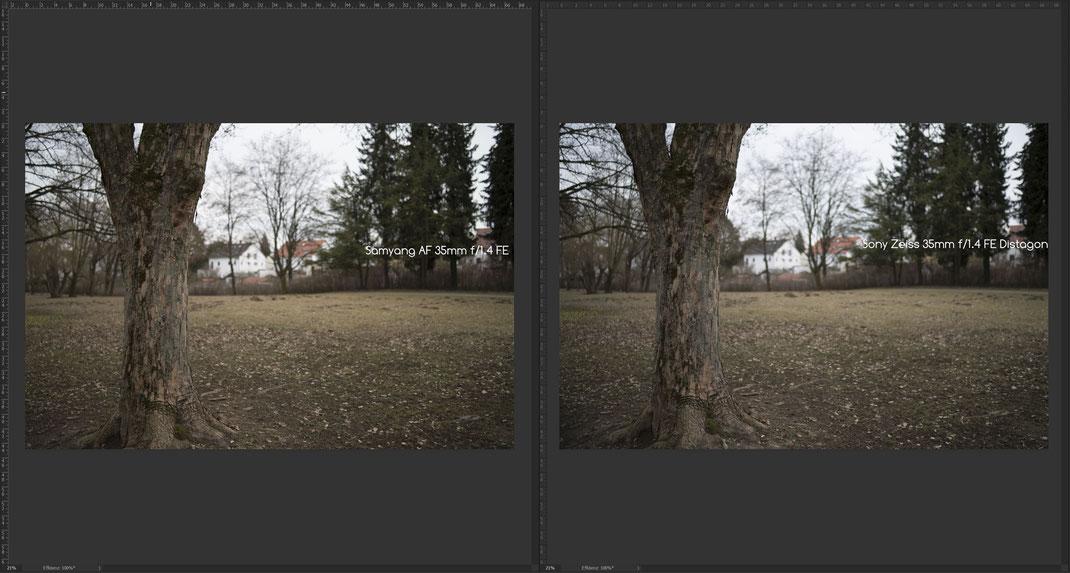 Samyang AF 35mm f/1.4 FE vs. Sony Zeiss 35mm f/1.4 Distagon, Bokeh Gesamtansicht.
