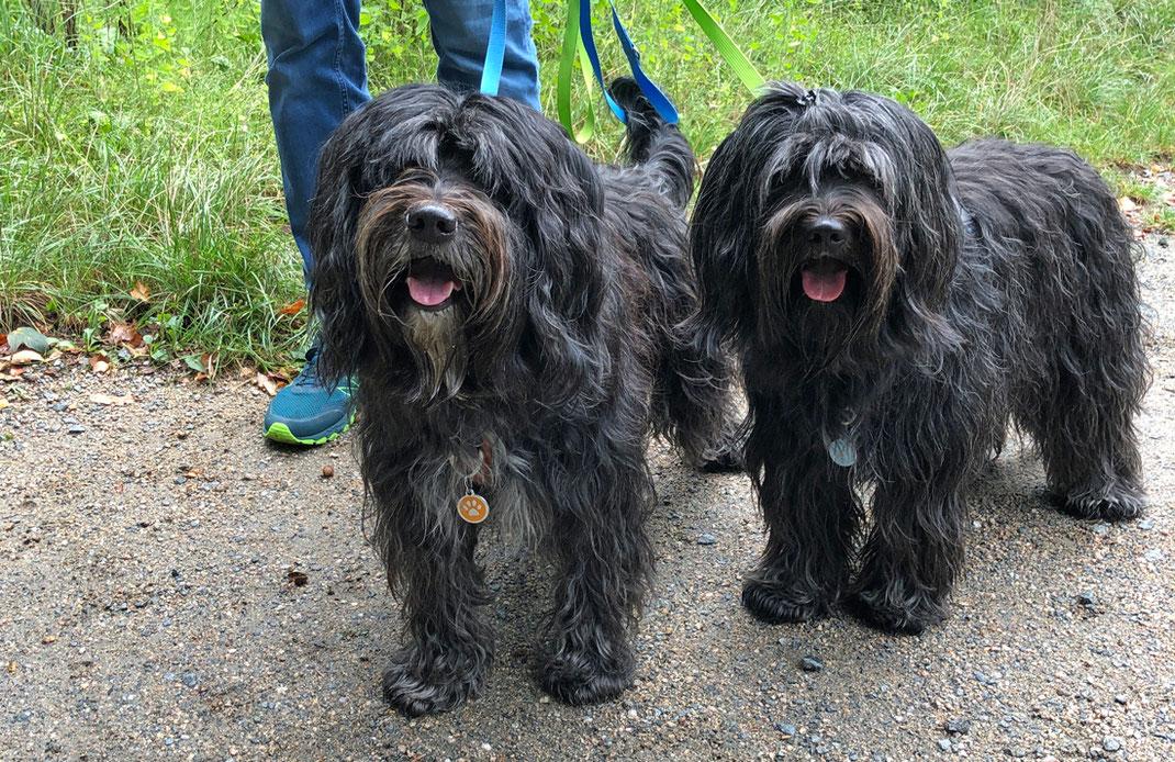 Lucie & Bailey, September 2020
