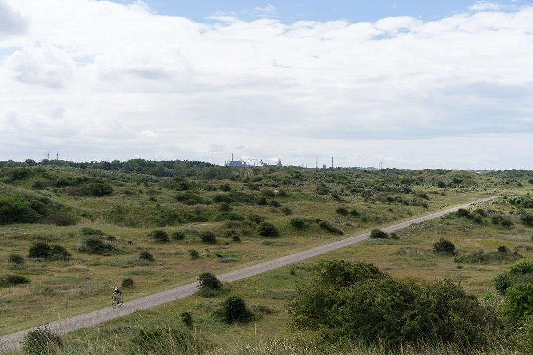 Radfahrer fährt entlang der niederländischen Nordseeküste. Im Hintergrund, am Horizont stehen Industrieanlagen von Wijk aan Zee.