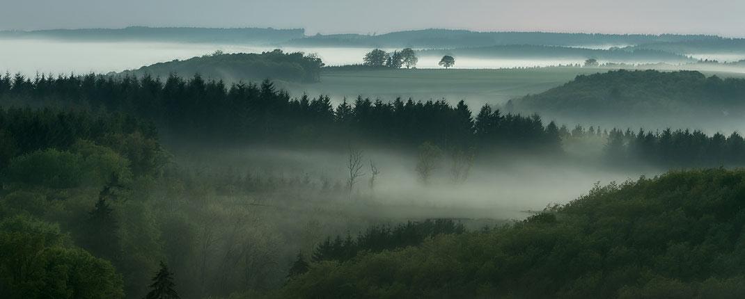 night Ardenne Luxembourg Wiltz fog foggy