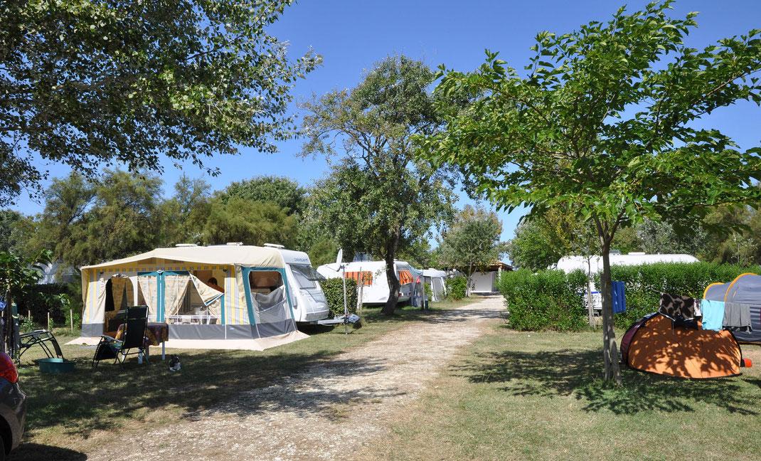 l'Océan, camping caravaning traditionnel sur l'île d'Oléron
