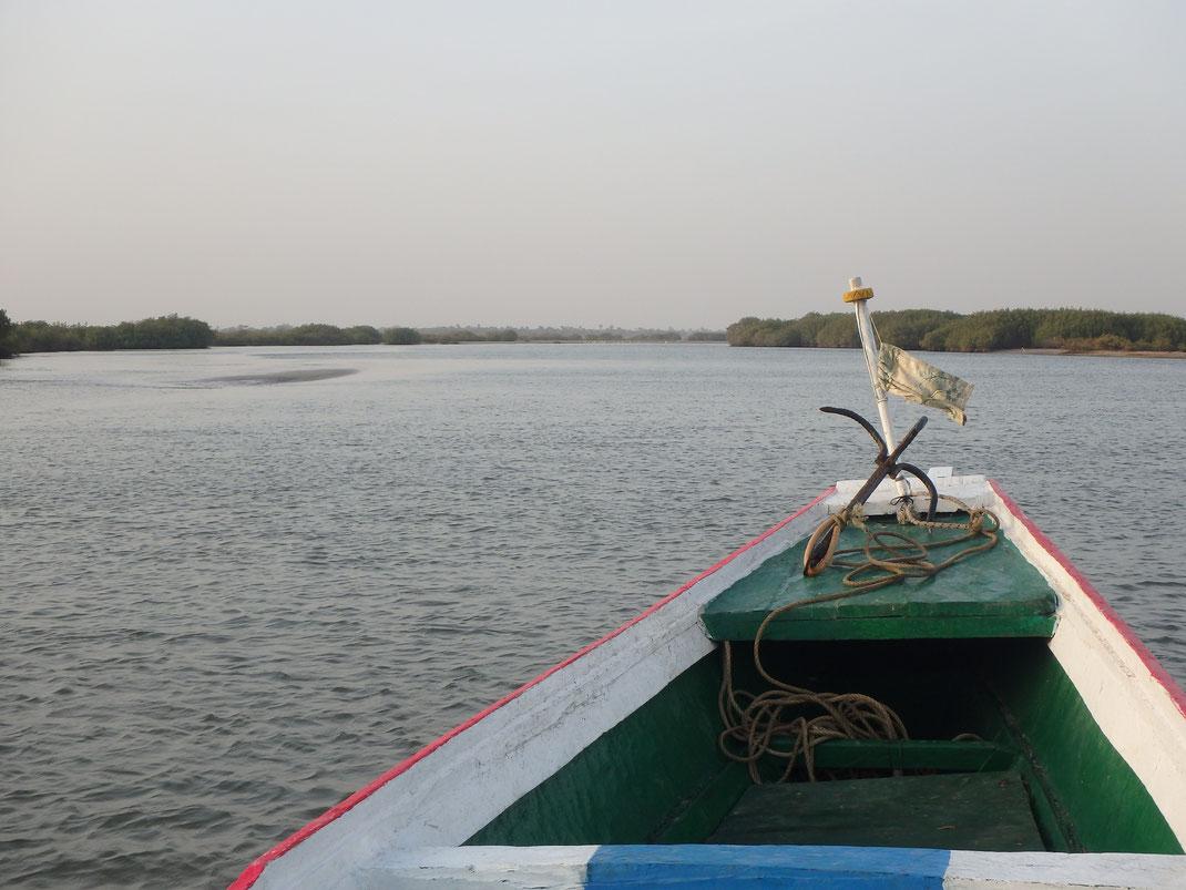 Mar Lodj, boat trip, Sine-Saloum delta