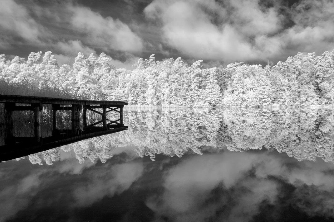 Infrarotfotografie, Mecklenburg, Schloss, Schloss Raben Steinfeld, Schweriner See, Infrared Photography, Holger Nimtz, monochrom, Infrarot, Fotokunst,