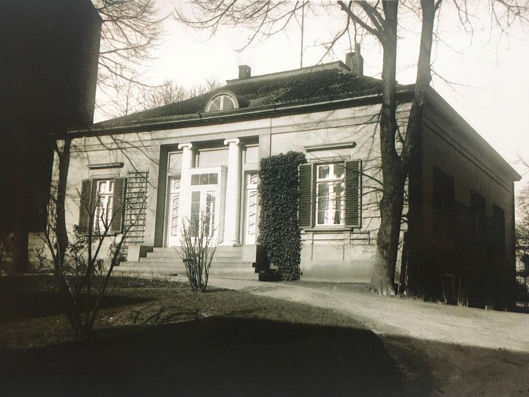 Das Theater im Zimmer Hamburg in den frühen Jahren
