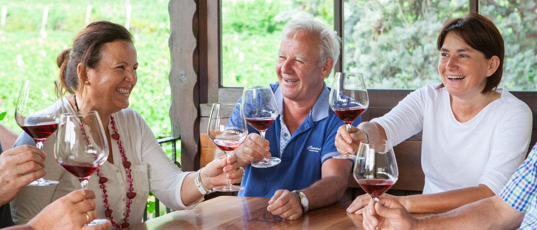 vendita vini Bolzano Alto Adige