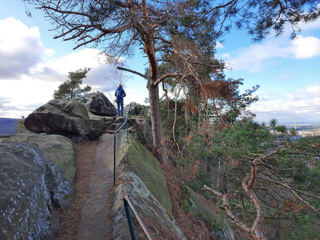 Eine Wandererin steht auf der Teufelsmauer bei Blankenburg im Harz auf Felsen und genießt zwischen Bäumen und Felsen die Aussicht.