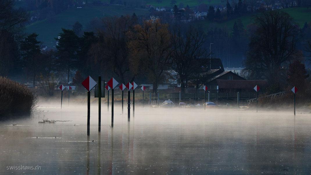 Morgennebel über dem alten Rhein bei Altenrhein mit Seezeichen auf Pfählen.