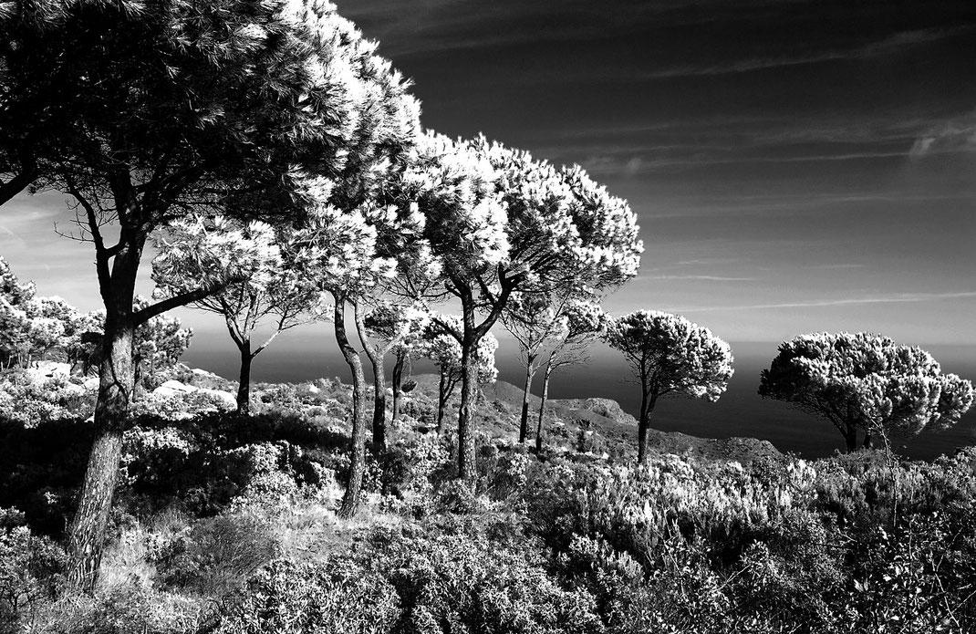 Die Küste von Barcelona in Spanien fotografiert von Martin Boelt