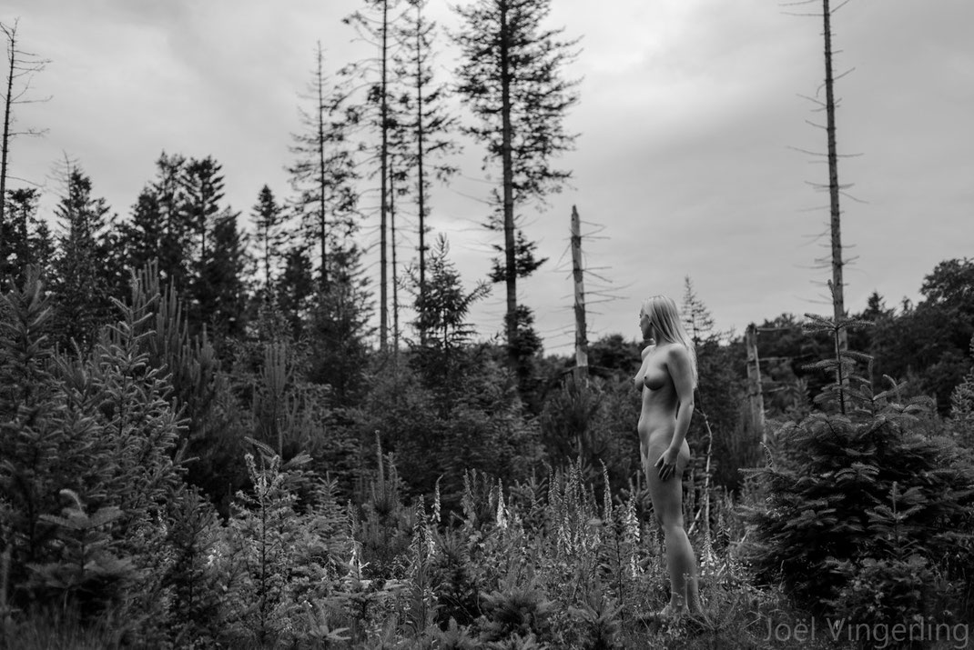 fineart, blackandwhite, nude, nikon, forest