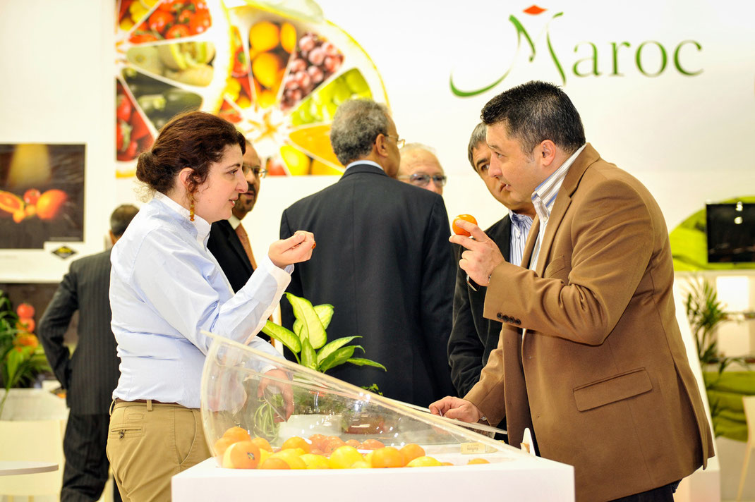 fruit logistica, maroc export