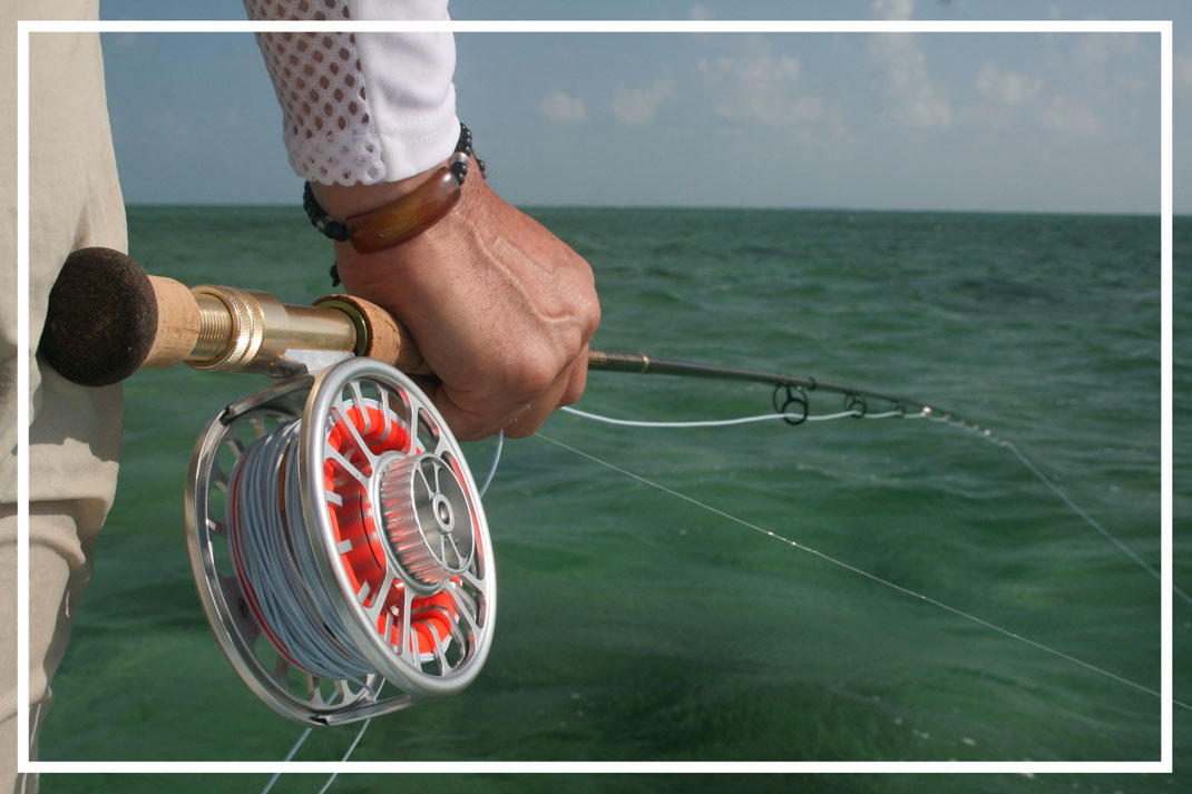 Fly fish Mexico, FFTC.club saltwater destination, Fly fisher at Punta Allen Fishing Club, Fly fish saltwater adventure at Ascension Bay for bonefish, permit and tarpon.
