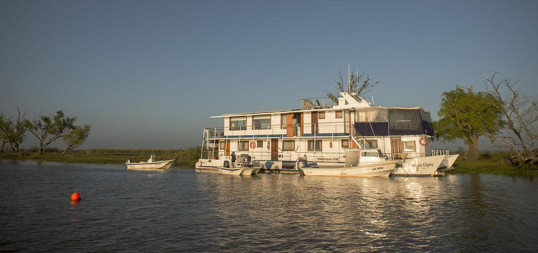 Fly fish North Argentina, FFTC.club saltwater destination, Parana Gypsi River Cruiser, Golden Dorado Fishing, Fly fish destinations at Parana river.