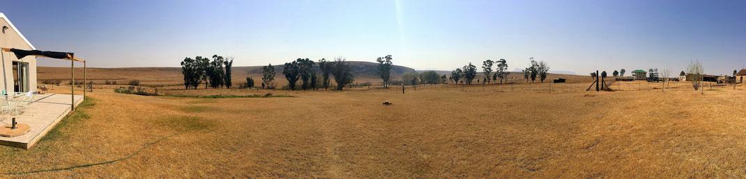 Der Ausblick auf den Garten vom AirBnB-Farm-Gästehaus... grandios.