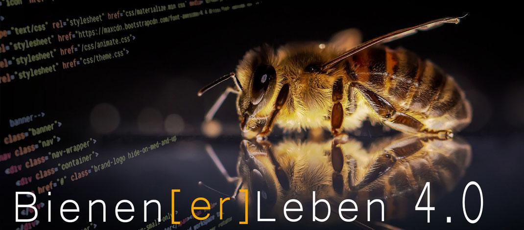 Bienen erleben 4.0 auf den Natur und Imkerhof Zingst