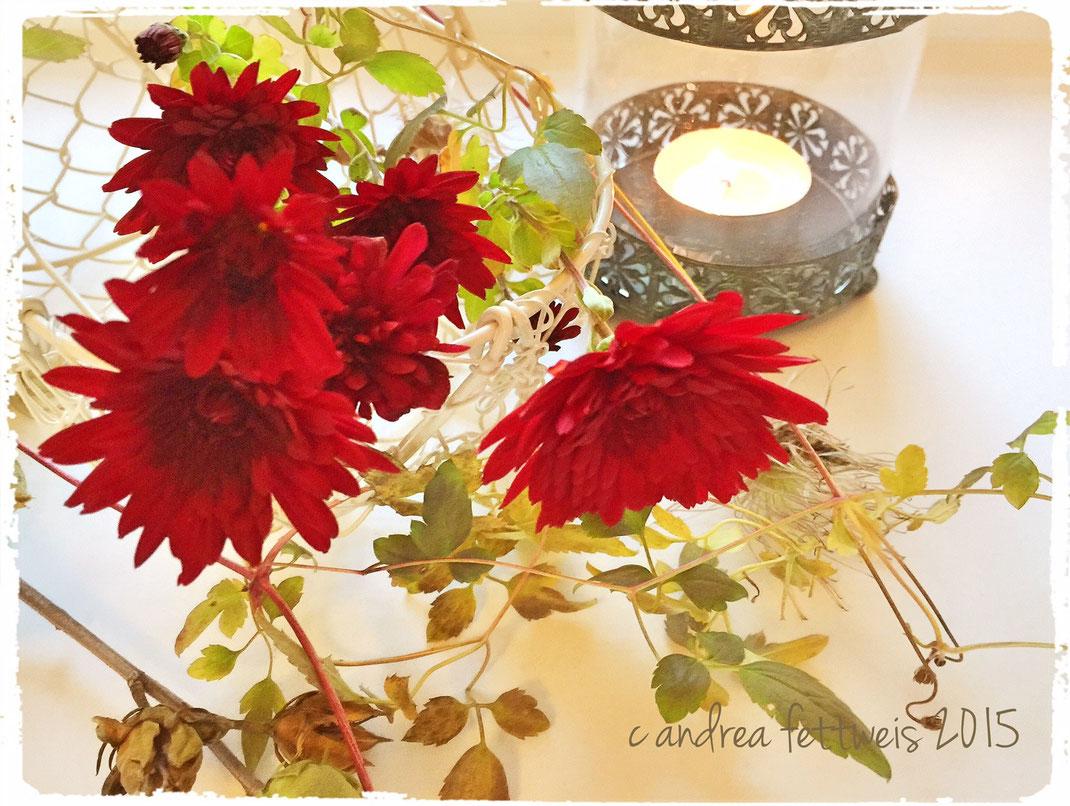 Herbstdeko mit Astern, Clematisranke und Malvenzweig