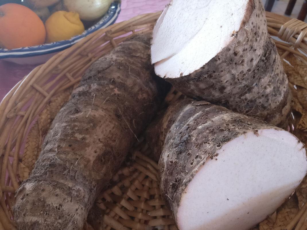 Injam-Flusskartoffel aus dem Süden von Portugal der Algarve saisonale Zubereitung im Restaurant Martins Kulinarium in Carvoeiro,Mobile Kochschule