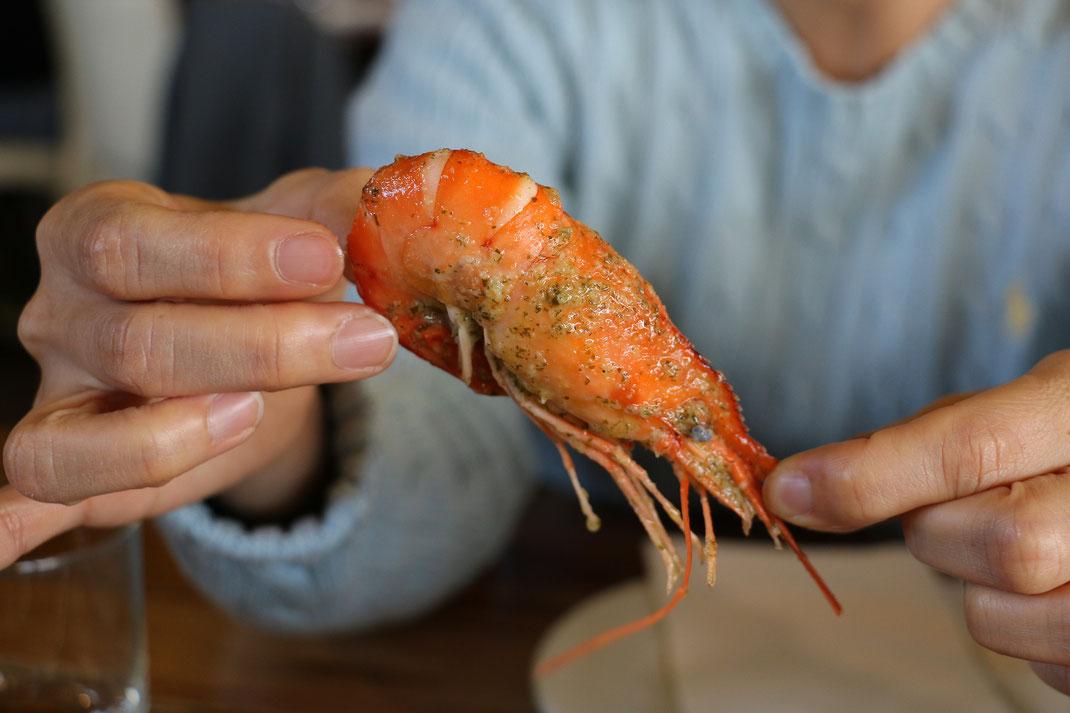 Garnelen,Camarão,Krabben,Shrimps,Martins Kulinarium,Carvoeiro,Algarve,Portugal,Mobile Kochschule