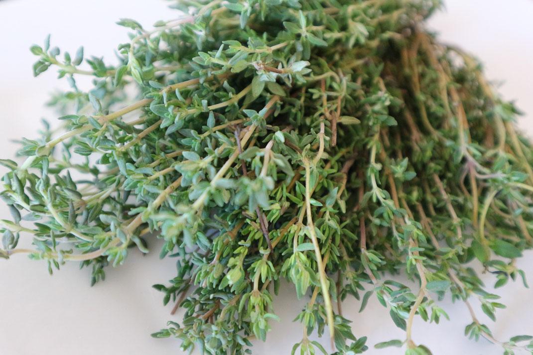 Thymian oder Tomilho genannt finden Sie in zahlreichen Rezeptideen in den Kochbüchern von Annett und Martin Busse aus dem Hause Martins Kulinarium in Carvoeiro,Algarve,Portugal