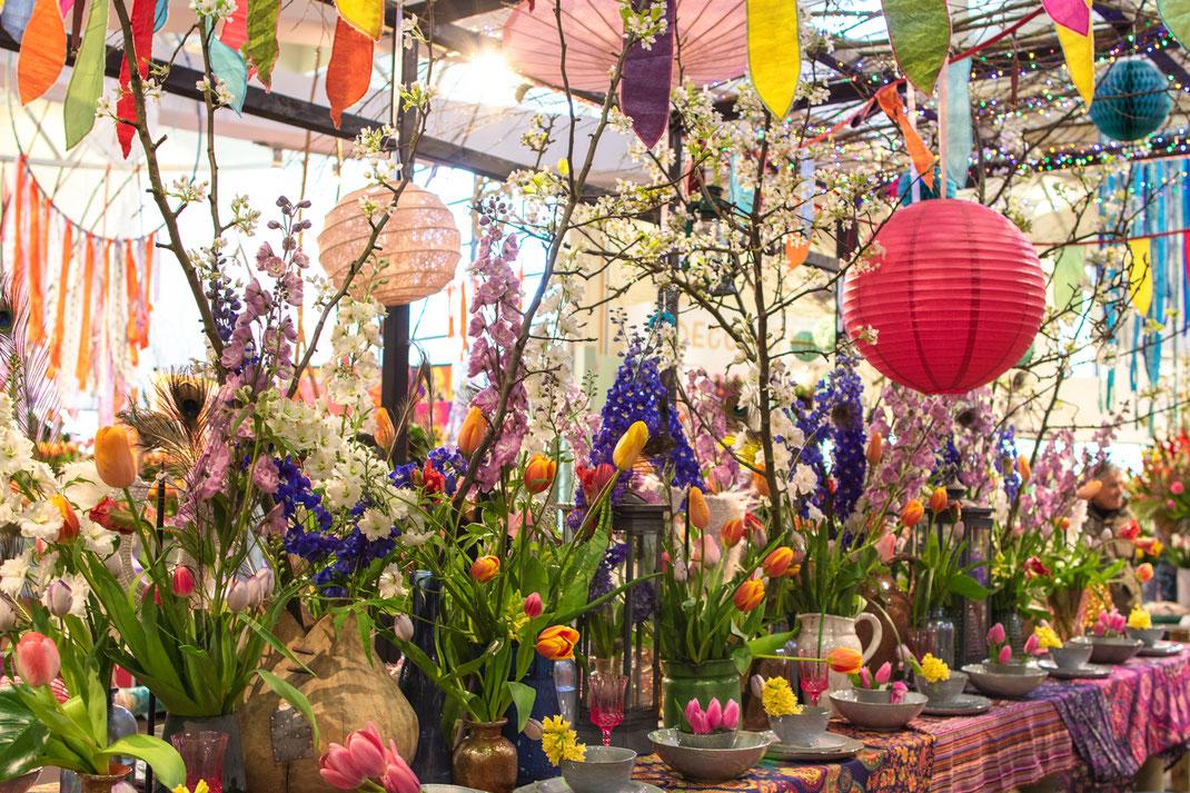 Tulpen Tulip Keukenhof Holland dekoration Virginie Varon