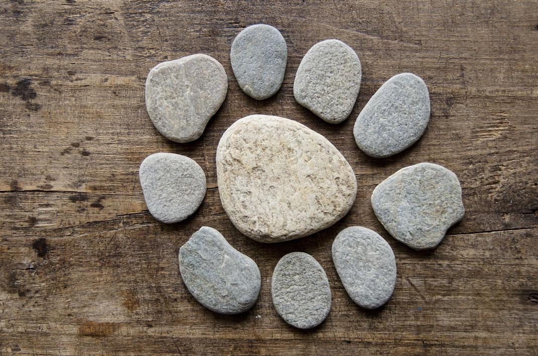 Blume aus Steinen auf Holz