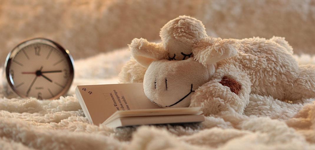Gemütlichen Platz zum Lesen suchen