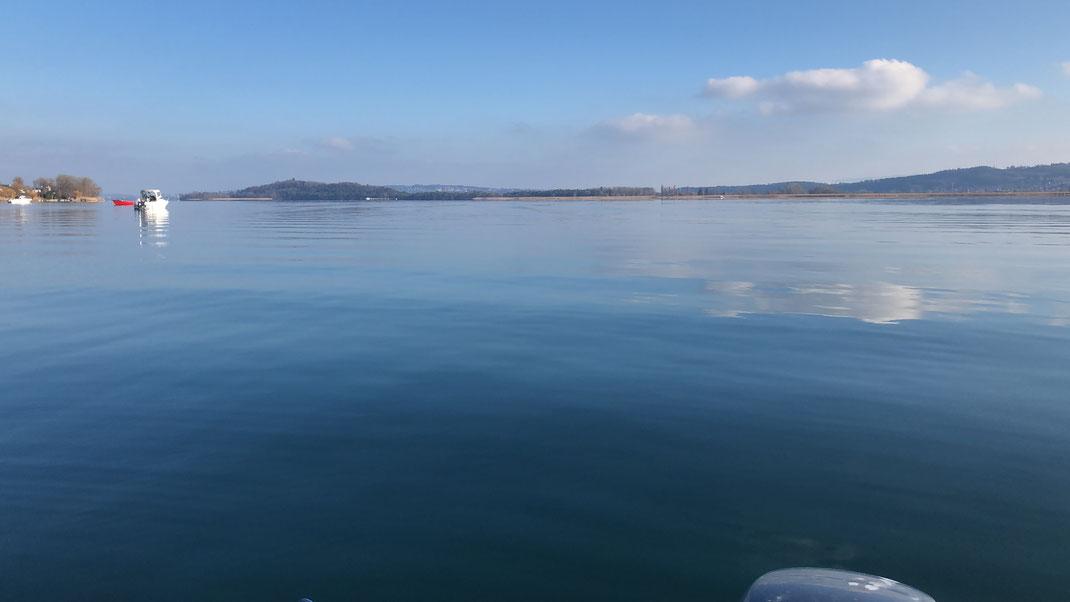 Felchen, Bielersee, Fischen, Angeln, Blog, Gambe, Hegene, Renken, Seeland