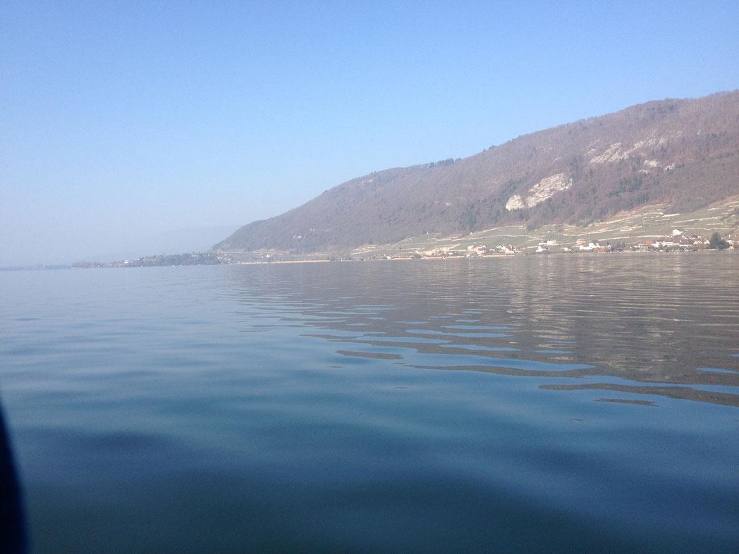 Fischen, Angeln, Murtensee, Bielersee, Zihlkanal, Seeland, Fischer, Angler, Köder, Wobbler, Gummifisch, Blog