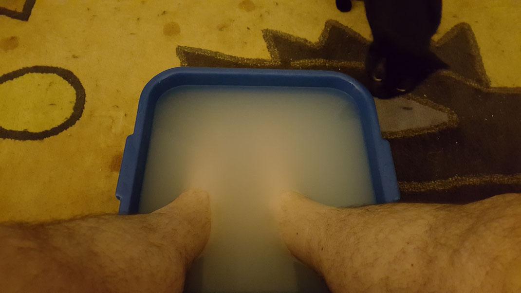 Melody beäugt misstrauisch mein Fußbad.