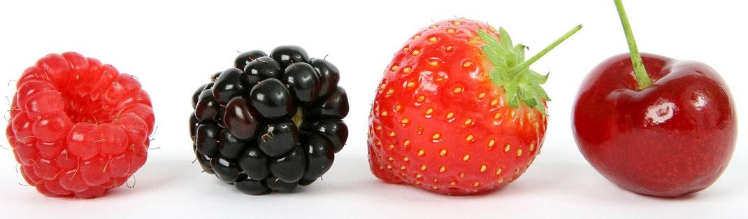 Power für Kids - Beeren -  vegansports fit & healthy
