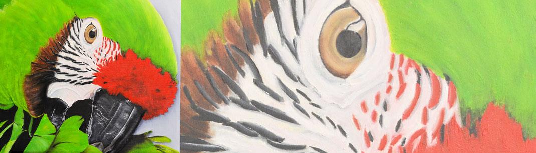 Schilderij papegaai laten maken van je eigen papegaai.