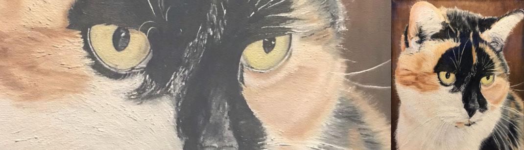 Schilderij laten maken van je kat, poes of hond, van je huisdier ter nagedachtenis.