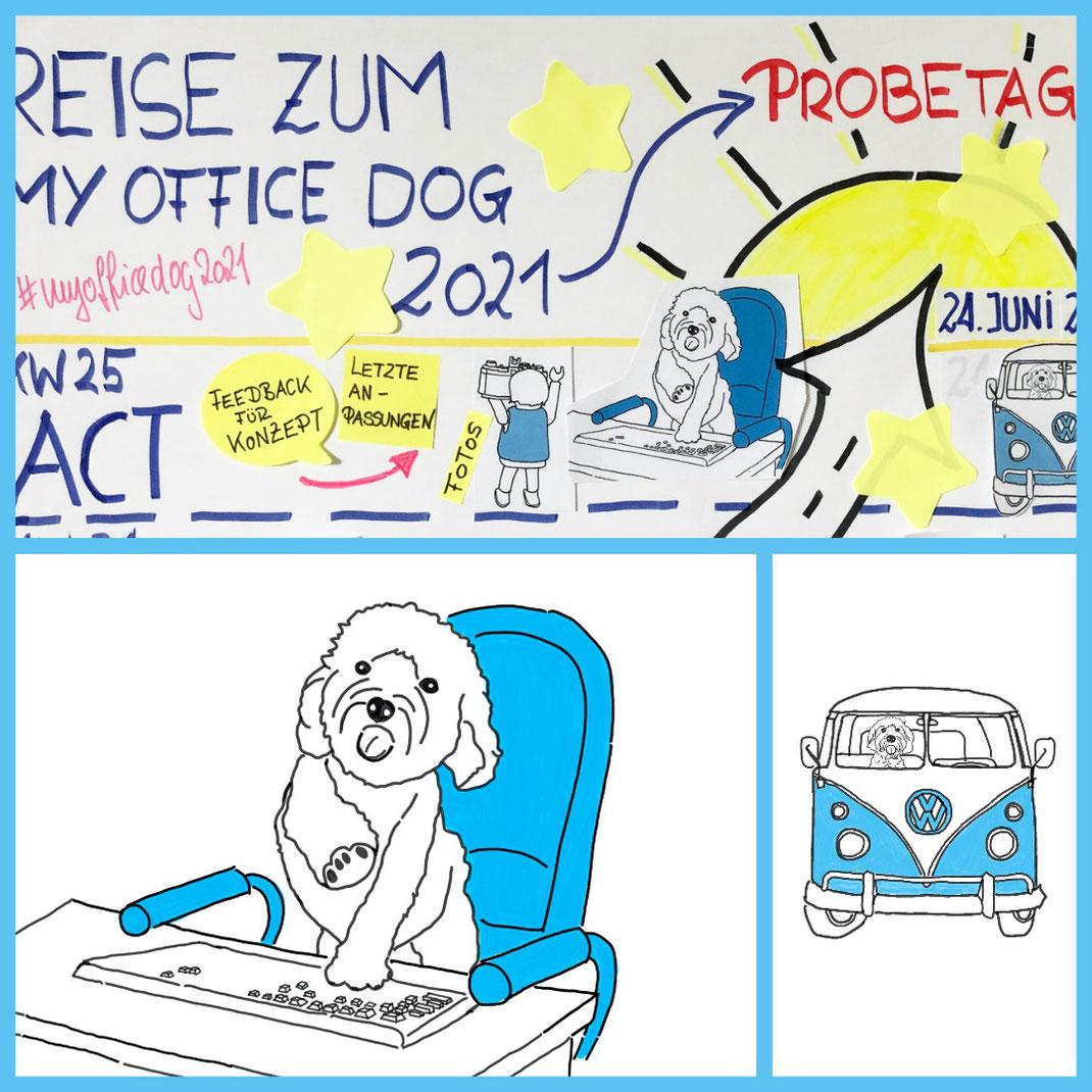 My Office Dog 2021 Probetag am 24. Juni. In Verbindung mit dem Kollege Hund Aktionstag des Deutschen Tierschutzbundes. Das Finale einer Vorbereitungsreise.