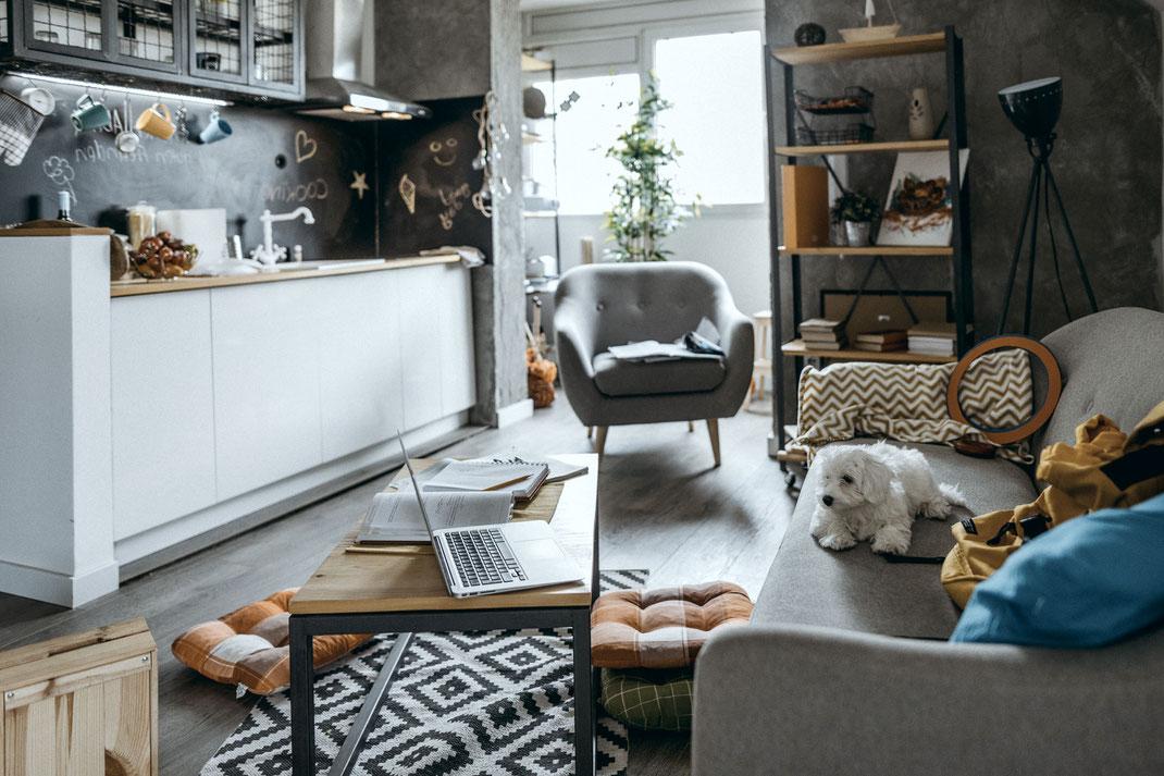 Creative Mind FeelGood @Work · My Office Dog 2021 · Bürohunde als Benefit innerhalb Deiner Unternehmenskultur.