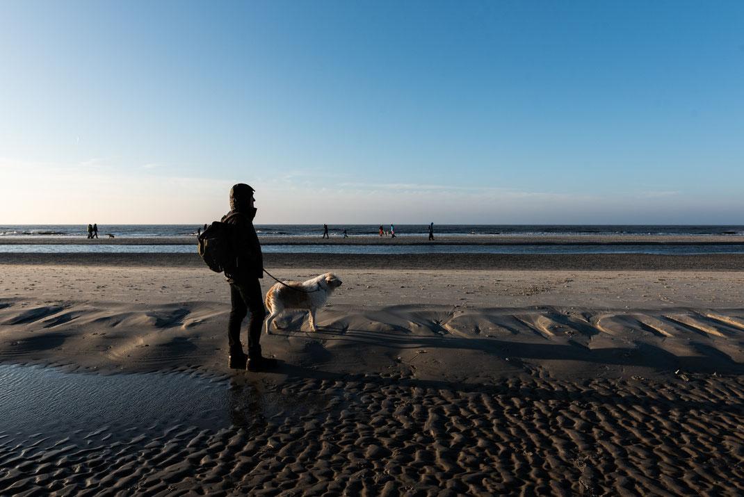 Mit Hund an der Nordsee