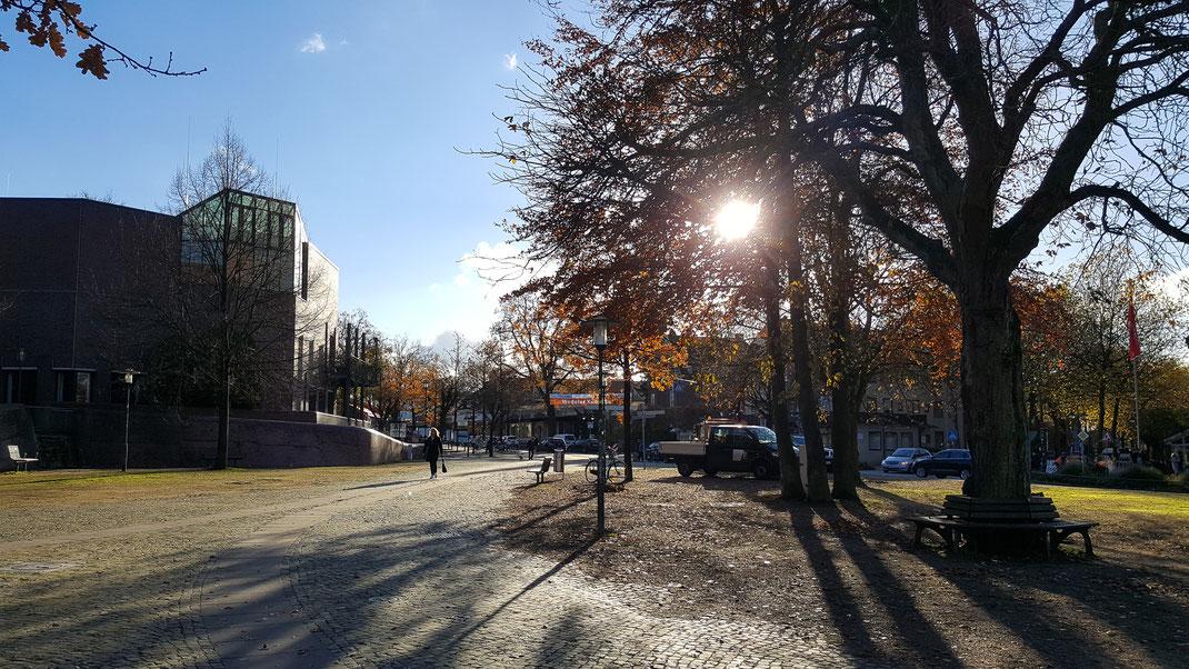 Herbstliches Gegenlicht am Wedeler Rathausplatz