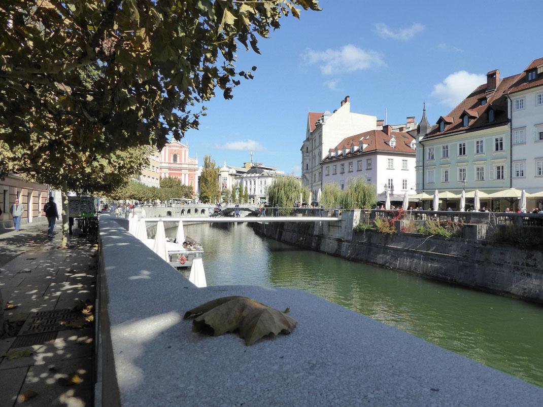 Traumhaft schönes Ljubljana.