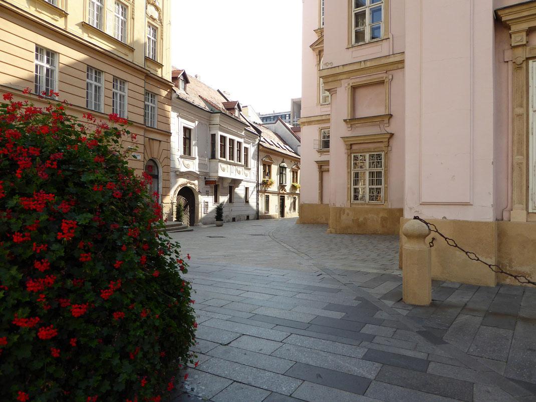 Mit dem Katamaran von Wien nach Bratislava; Altstadt Bratislava