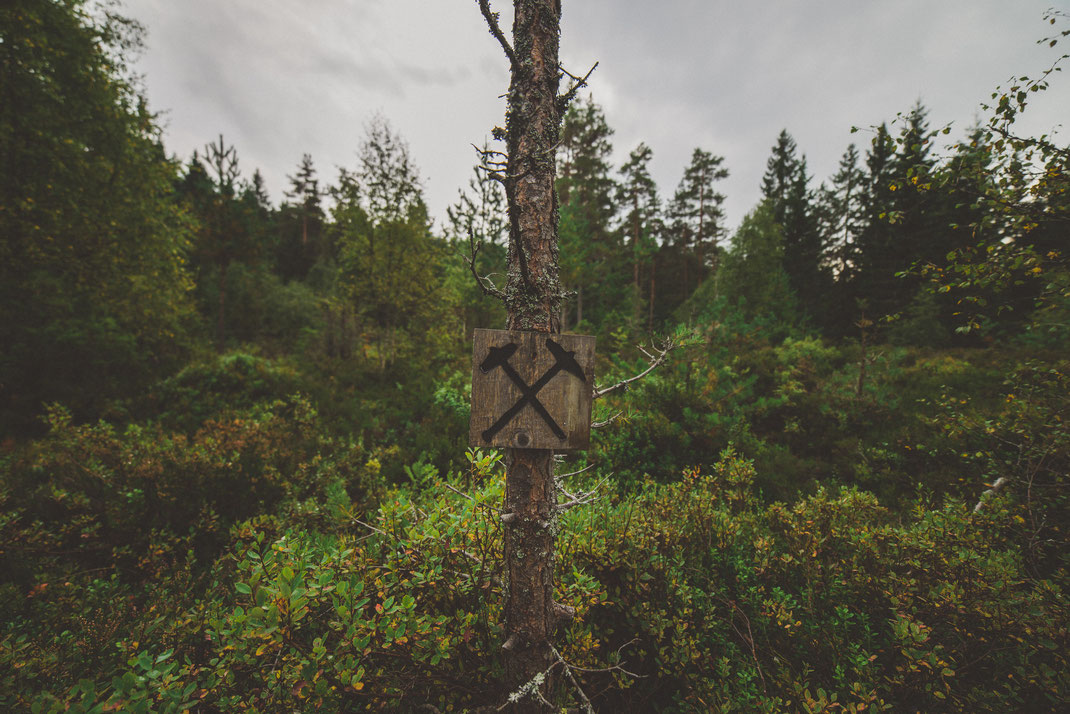 a wooden mining sign on a tree