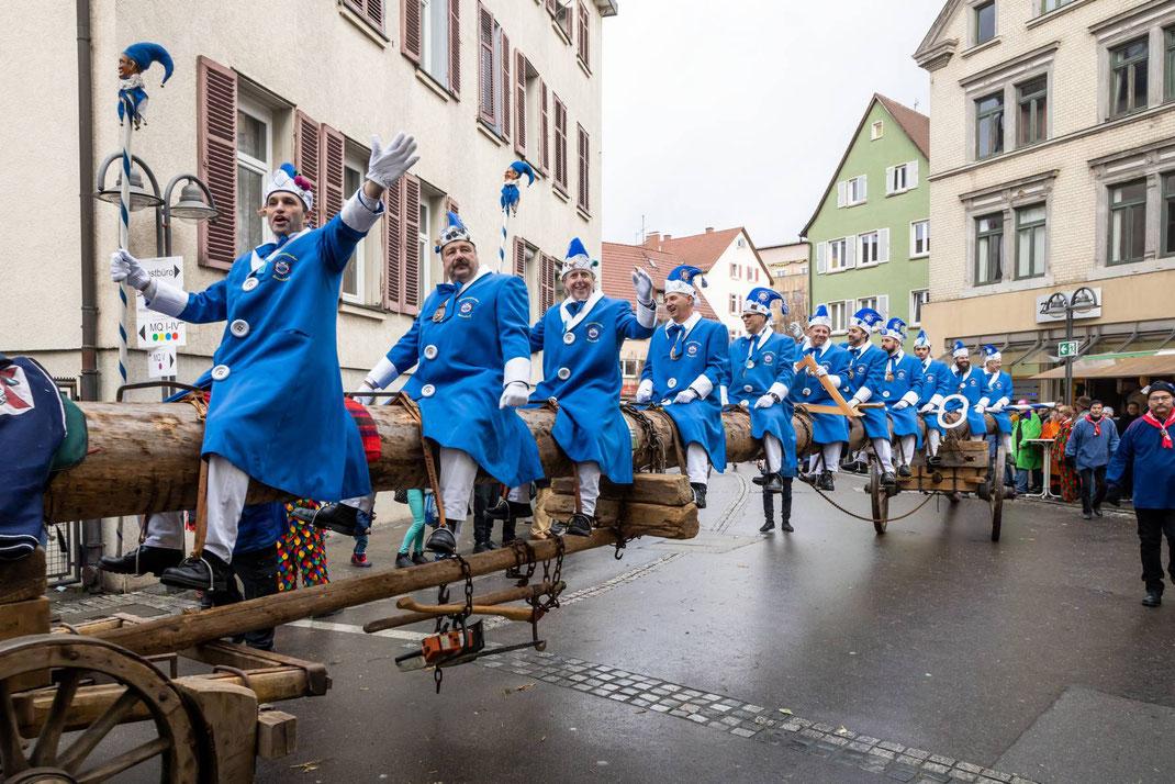 Ein gigantisches Gefährt in den engen Altstadtgassen: die von 4 Pferden gezogene Tanne mit 12 Reitern der Pflaumenschlucker Bonndorf e.V.