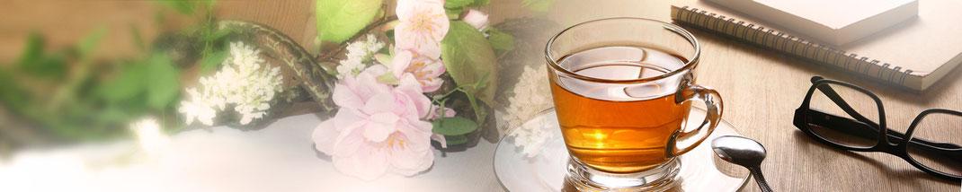 Lichtgarten Licht-Garten Kerzen Teelichter Simone Fischer Service Beratung Fürsorge