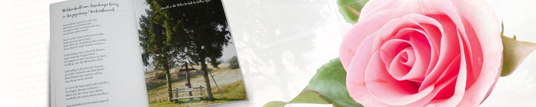 Lichtgarten Licht-Garten Kerzen Teelichter Simone Fischer Postkarte Postkarten Bücher