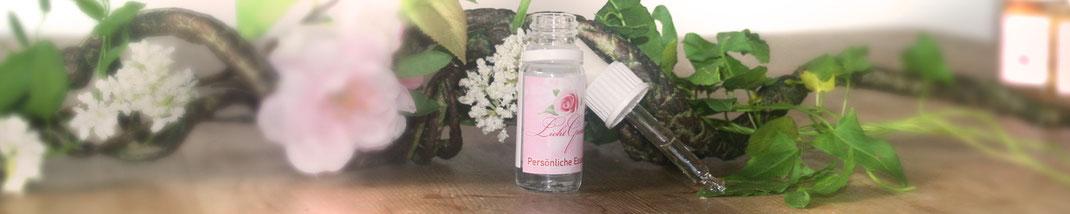 Lichtgarten Licht-Garten Kerzen Teelichter Simone Fischer Sprays Spray Aura