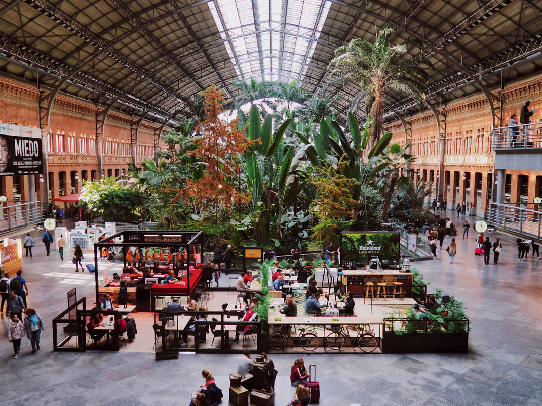 The amazing and beautiful botanical garden of Atocha Train Station - We could take the train from here everyday!