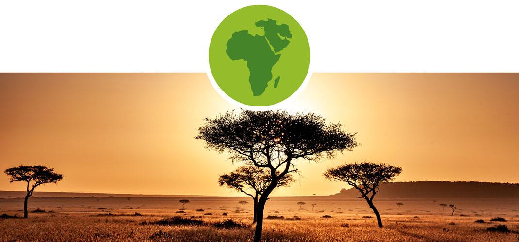 Genuss; Set; Afrika; Orient; Berbere; African Rub; Kreuzkümmel